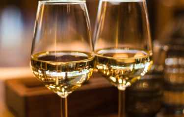 Rondvaart + Wijnproeverij